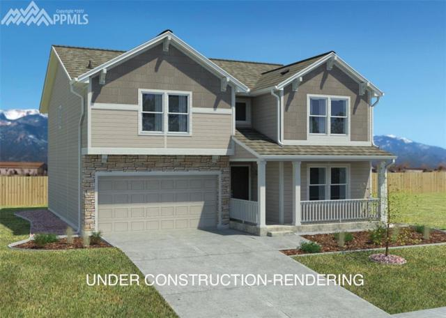 19484 Lindenmere Drive, Monument, CO 80132 (#3858564) :: 8z Real Estate