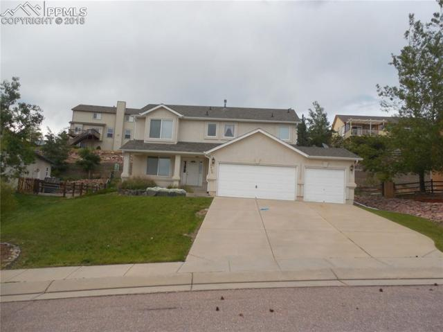 15485 Curwood Drive, Colorado Springs, CO 80921 (#3865051) :: Action Team Realty
