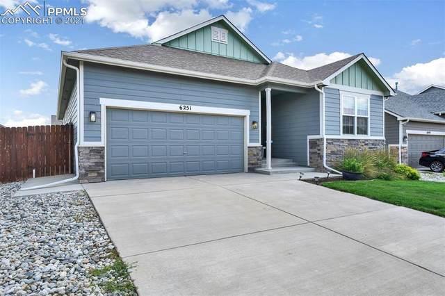 6251 Marilee Way, Colorado Springs, CO 80911 (#3865511) :: Venterra Real Estate LLC