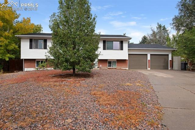 6650 Player Place, Colorado Springs, CO 80911 (#3867679) :: Jason Daniels & Associates at RE/MAX Millennium
