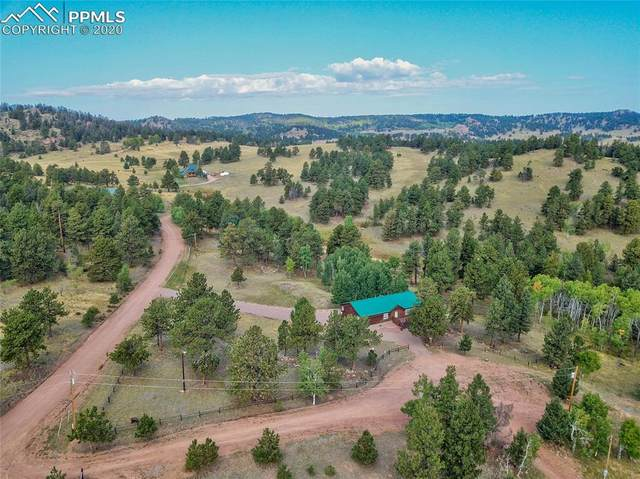 53 Panorama Circle, Florissant, CO 80816 (#3868360) :: Finch & Gable Real Estate Co.