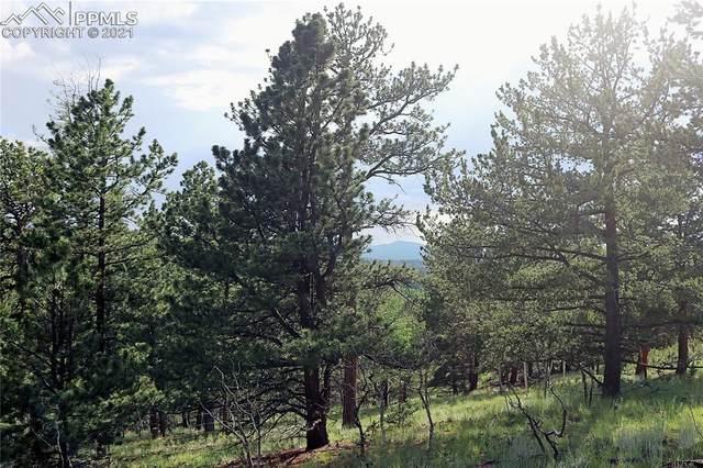 280 Jolly Rogue Drive, Divide, CO 80814 (#3872270) :: Symbio Denver
