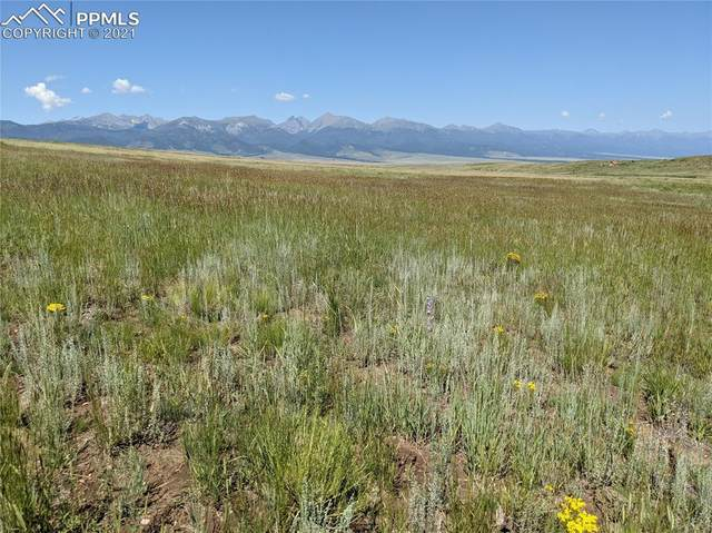665 Round Mountain Road, Westcliffe, CO 81252 (#3874364) :: Fisk Team, eXp Realty