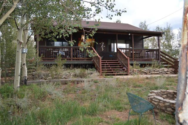 69 Hobo Court, Cripple Creek, CO 80813 (#3877857) :: 8z Real Estate