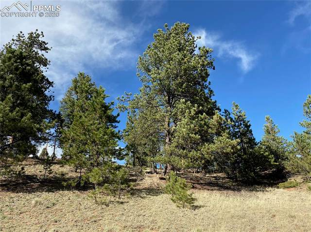 TBD County Road 512, Divide, CO 80814 (#3878772) :: CC Signature Group