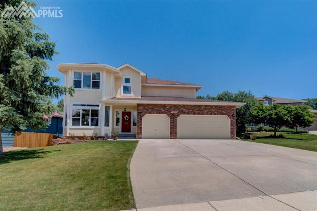 10125 Ottertail Court, Colorado Springs, CO 80920 (#3881084) :: Jason Daniels & Associates at RE/MAX Millennium