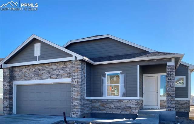 8261 Diorite Drive, Colorado Springs, CO 80938 (#3882566) :: Action Team Realty