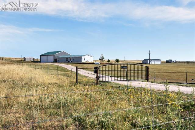 23580 Murphy Road, Calhan, CO 80808 (#3887186) :: Tommy Daly Home Team