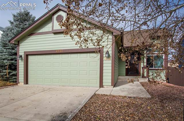 4712 Skywriter Circle, Colorado Springs, CO 80922 (#3890530) :: The Treasure Davis Team
