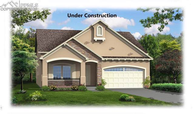 7241 Bigtooth Maple Drive, Colorado Springs, CO 80925 (#3891795) :: Tommy Daly Home Team