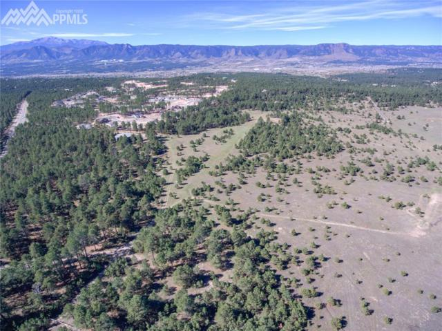 1868 E Baptist Road, Colorado Springs, CO 80921 (#3896706) :: 8z Real Estate