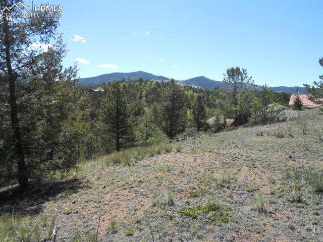 1101 Dandy Jim Drive, Cripple Creek, CO 80813 (#3897905) :: Action Team Realty