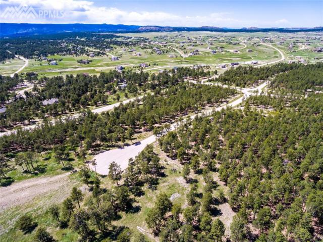 19325 Hilltop Pines Path, Monument, CO 80132 (#3899183) :: The Dixon Group