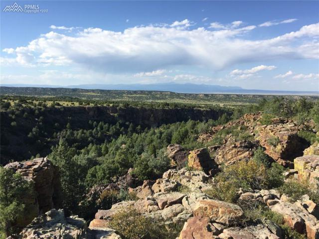 0 Canyon Heights Road, Pueblo, CO 81005 (#3903939) :: 8z Real Estate