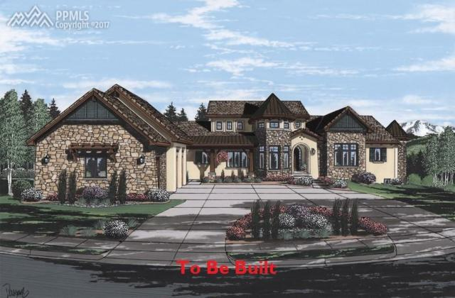 1634 Vine Cliff Heights, Colorado Springs, CO 80921 (#3905540) :: Jason Daniels & Associates at RE/MAX Millennium