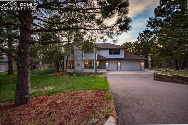 20150 Silver Horn Lane, Monument, CO 80132 (#3906103) :: Tommy Daly Home Team