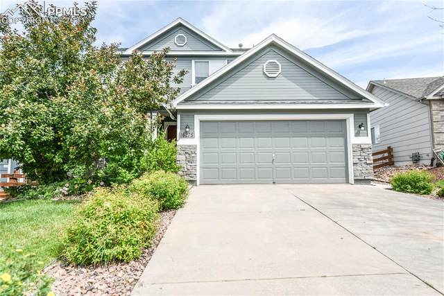 16275 Windy Creek Drive, Monument, CO 80132 (#3907560) :: Finch & Gable Real Estate Co.