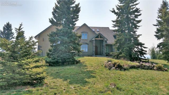 125 Matthew Road, Divide, CO 80814 (#3908682) :: 8z Real Estate