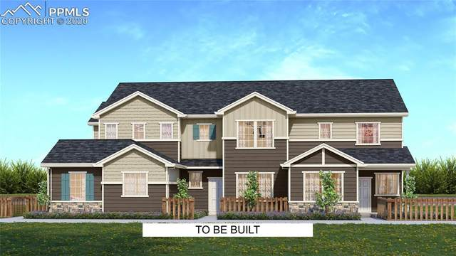 16449 Hay Barn Heights, Monument, CO 80132 (#3909628) :: Action Team Realty