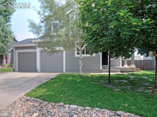 5439 Geode Lane, Colorado Springs, CO 80922 (#3917638) :: Jason Daniels & Associates at RE/MAX Millennium
