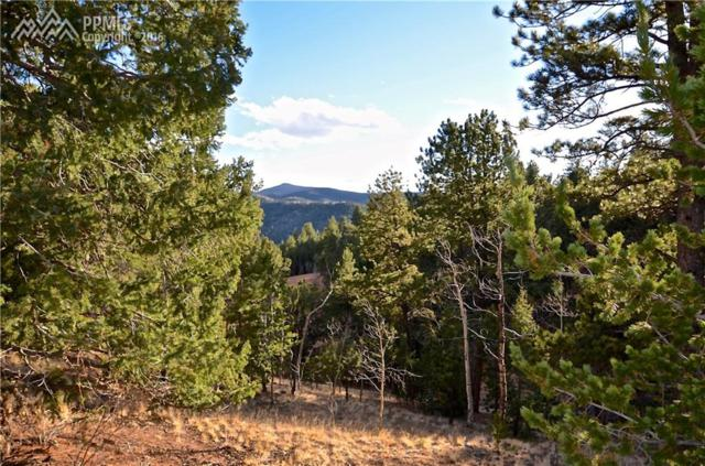 104 Rainbow Court, Divide, CO 80814 (#3920594) :: 8z Real Estate