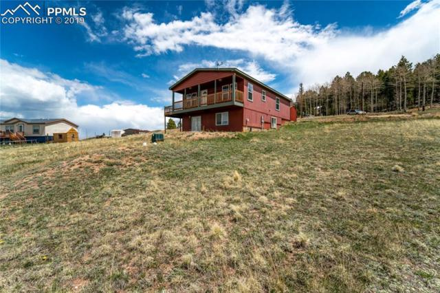 31 Will Stutley Drive, Divide, CO 80814 (#3920644) :: The Peak Properties Group