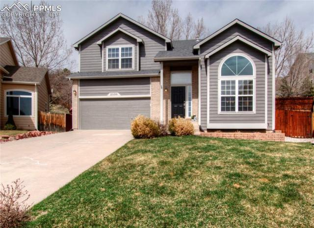 2530 Rick Court, Colorado Springs, CO 80919 (#3920763) :: Tommy Daly Home Team