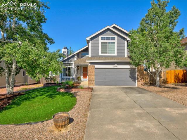 2950 Haystack Drive, Colorado Springs, CO 80922 (#3924337) :: Fisk Team, RE/MAX Properties, Inc.