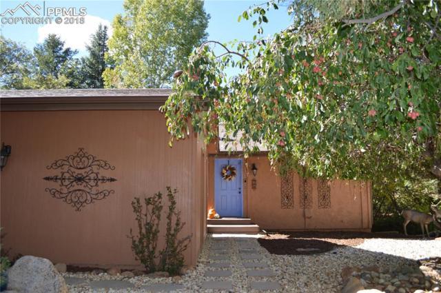 28 Sandra Lane, Manitou Springs, CO 80829 (#3925164) :: CENTURY 21 Curbow Realty