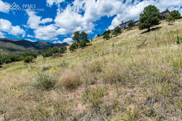 1955 Bluffside Terrace, Colorado Springs, CO 80919 (#3925911) :: CC Signature Group