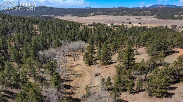72 Mica Circle, Florissant, CO 80816 (#3926290) :: Tommy Daly Home Team