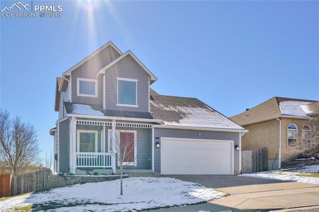 1031 Whistler Hollow Drive, Colorado Springs, CO 80906 (#3929660) :: The Treasure Davis Team