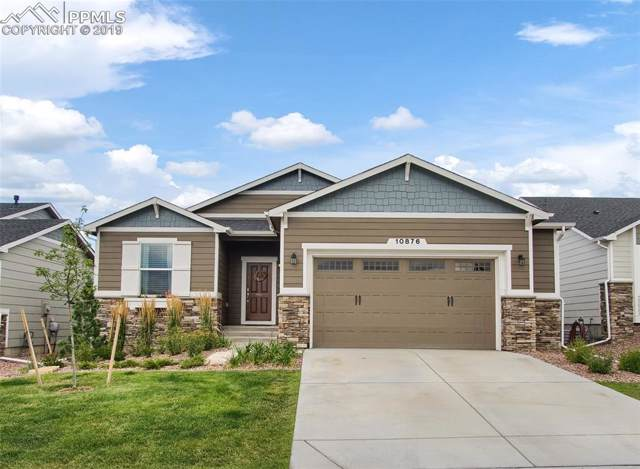 10876 Hidden Brook Way, Colorado Springs, CO 80908 (#3930509) :: The Treasure Davis Team