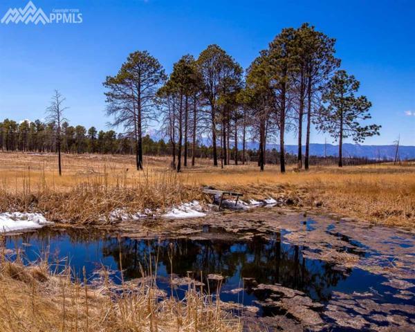 8060 Shoup Road, Colorado Springs, CO 80908 (#3931961) :: The Treasure Davis Team