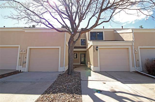 6965 Gayle Lyn Lane, Colorado Springs, CO 80919 (#3932303) :: Fisk Team, RE/MAX Properties, Inc.
