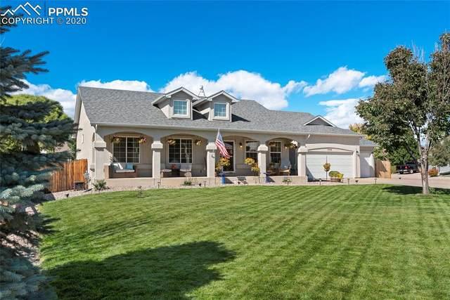 7058 Appletree Loop, Colorado Springs, CO 80925 (#3933531) :: 8z Real Estate