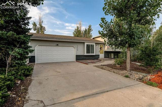 3625 Deep Haven Drive, Colorado Springs, CO 80920 (#3934292) :: Tommy Daly Home Team