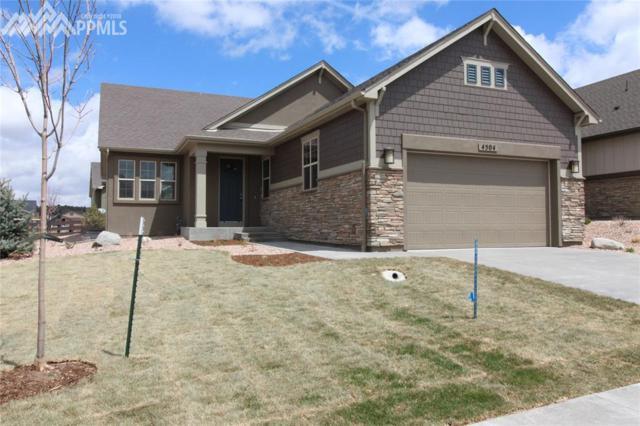 4504 Portillo Place, Colorado Springs, CO 80924 (#3936207) :: RE/MAX Advantage