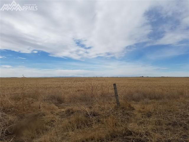 0059 Highway 94 Highway, Rush, CO 80833 (#3939451) :: The Dunfee Group - Keller Williams Partners Realty