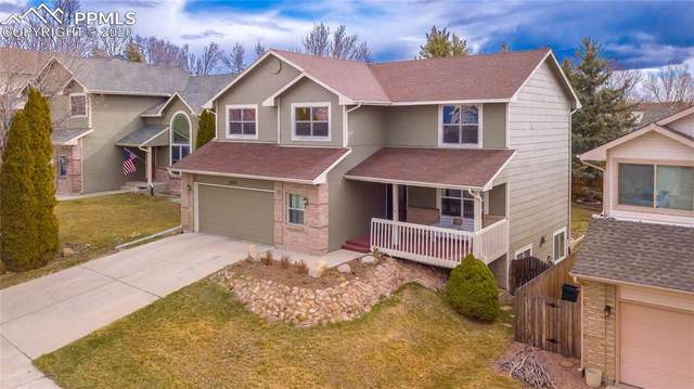 3920 Sedgewood Way, Colorado Springs, CO 80918 (#3945788) :: Tommy Daly Home Team