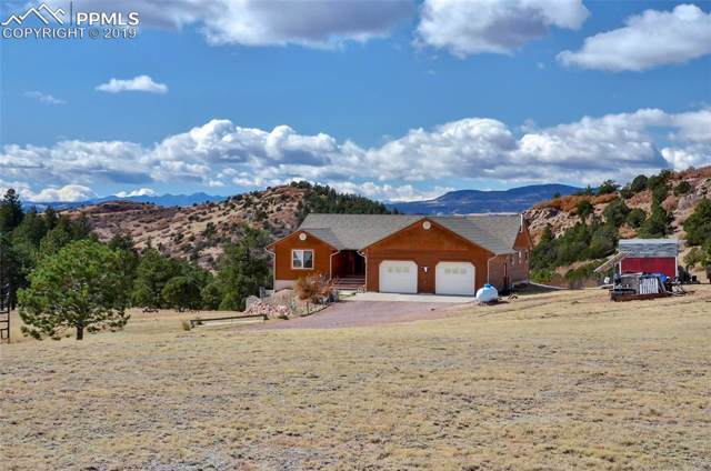 2589 Buckhorn Lane, Canon City, CO 81212 (#3949567) :: Jason Daniels & Associates at RE/MAX Millennium