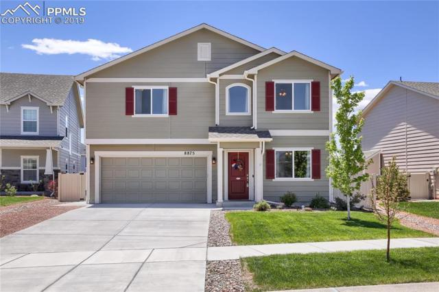 8875 Vanderwood Road, Colorado Springs, CO 80908 (#3949770) :: Tommy Daly Home Team