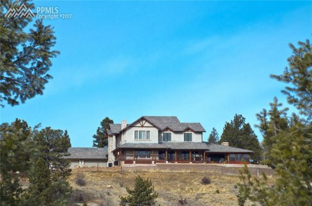 4687 W Highway 24 Highway, Florissant, CO 80816 (#3949940) :: 8z Real Estate