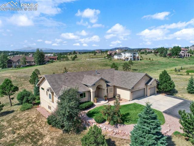 19624 Falcon Crest Court, Monument, CO 80132 (#3950421) :: Jason Daniels & Associates at RE/MAX Millennium