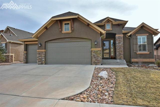 5225 Chimney Gulch Way, Colorado Springs, CO 80924 (#3950973) :: 8z Real Estate
