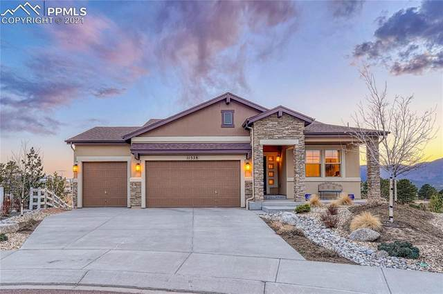 11528 Funny Cide Court, Colorado Springs, CO 80921 (#3956604) :: The Cutting Edge, Realtors