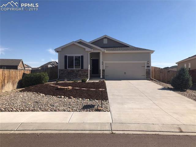 10024 Thunderbolt Trail, Colorado Springs, CO 80925 (#3960359) :: The Kibler Group