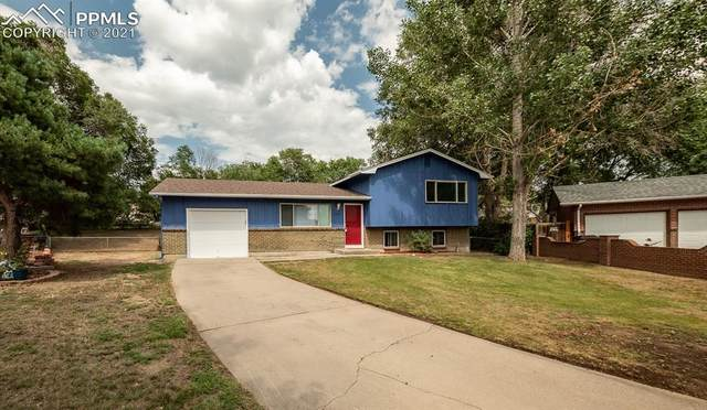 6901 Cattlemans Trail, Colorado Springs, CO 80911 (#3963814) :: Action Team Realty