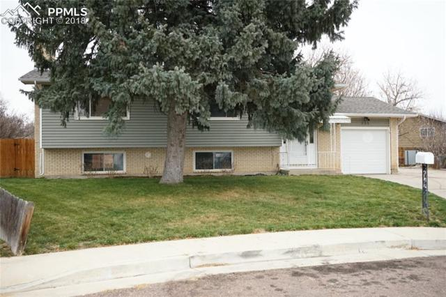 235 Dairy Lane, Colorado Springs, CO 80911 (#3968249) :: The Peak Properties Group