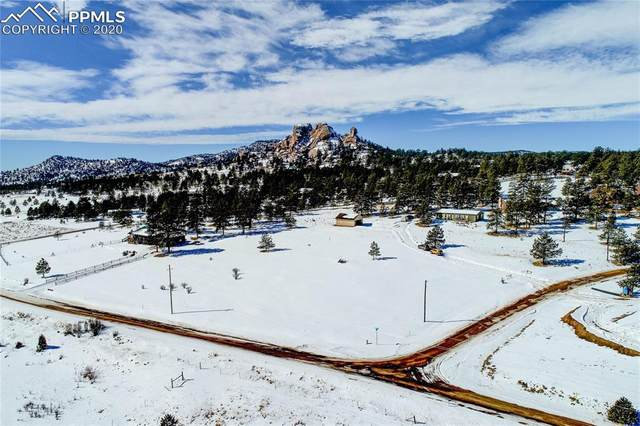101 Carriage Drive, Florissant, CO 80816 (#3969174) :: Finch & Gable Real Estate Co.